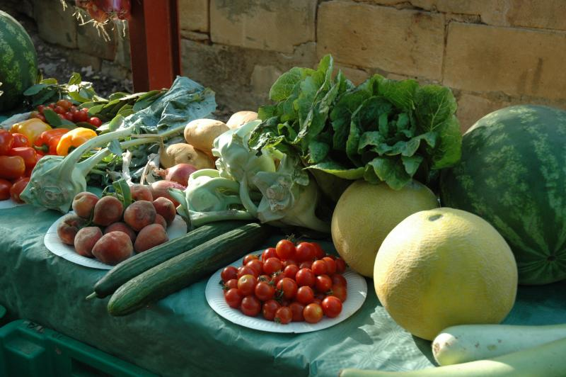MALTESE VEGETABLES
